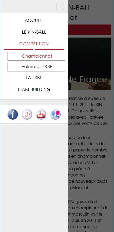 Site web liguekinballparisetidf.com - Responsive Mobile